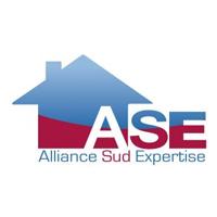 franchise alliance sud expertise