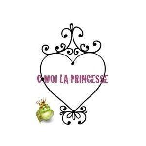 franchise c-moi-la-princesse