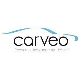 Franchise Carveo