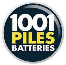 ouvrir une franchise 1001 piles